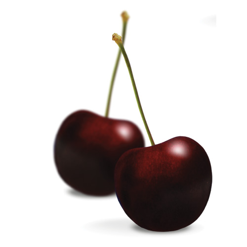 Gee Whiz Premium Dark Cherry DOMESTIC GRADE 18 lbs
